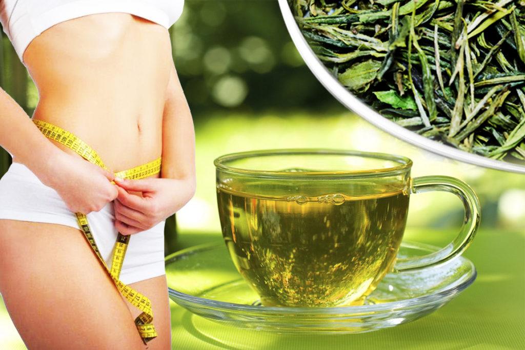 Какие травы можно пить для похудения