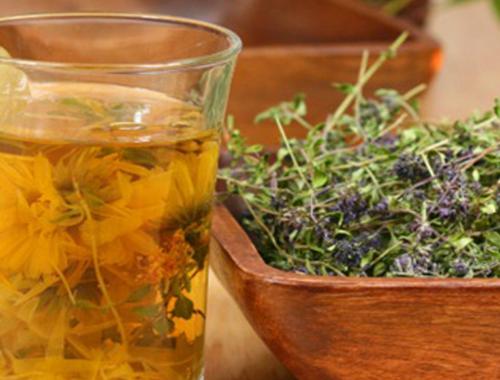 Какие травы можно пить от кашля