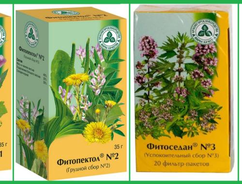 Какие травы можно пить при пневмонии
